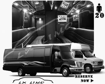Party Bus rental in Cleveland | Cleveland LIMOBUS 20 passengers