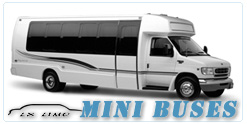 Mini Bus rental in Cleveland, OH